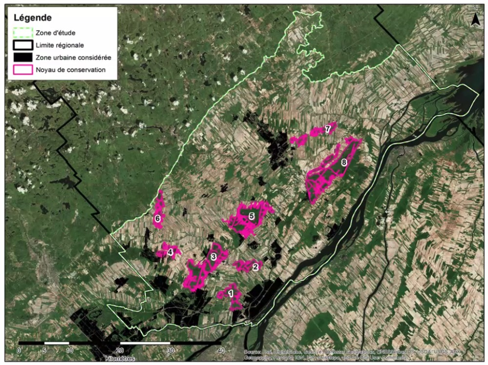 """Des """" corridors de connectivité """" pour sauver la faune de Lanaudière, espèrent des experts"""