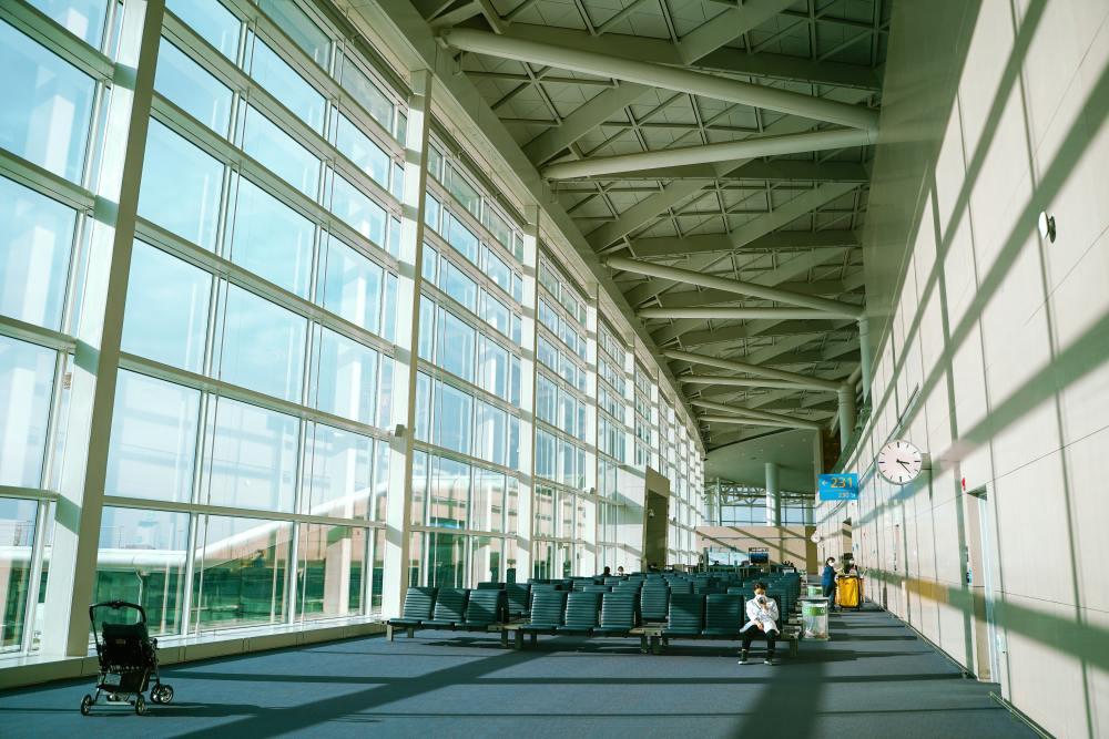 Le nombre de voyages internationaux augmente en décembre