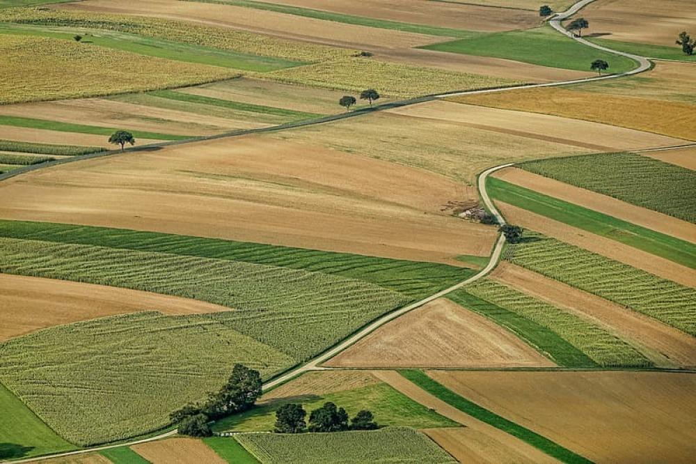 De nouvelles aides pour les travailleurs agricoles du Québec